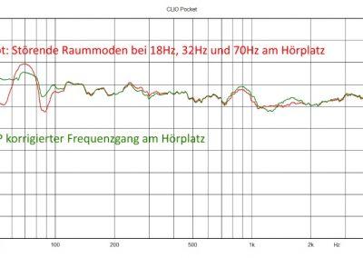 DWD-21 DSP korrigierter Frequenzgang
