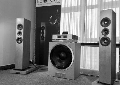 BETONart-audio NDHT2018 Dynamischer Bass - Kraft - Emotionale Musikdarbietung
